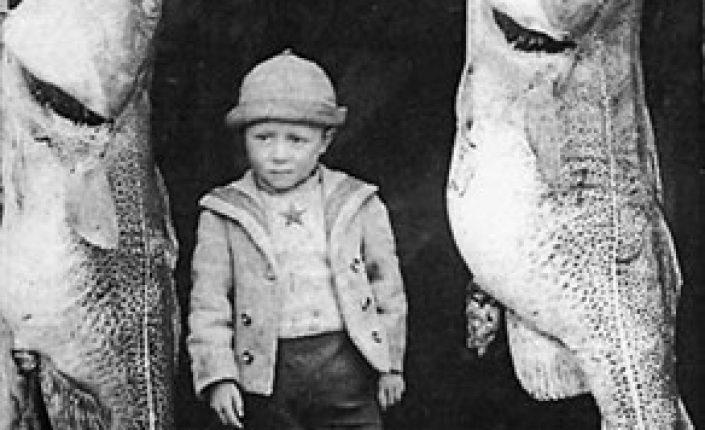 Экологический след человека: к чему привело рыболовство