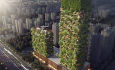 В Китае появятся «вертикальные леса»